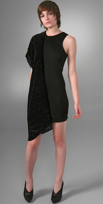 Alexander wang Burnout velet combo dress